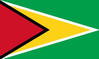 guyana_flag_printables_av2